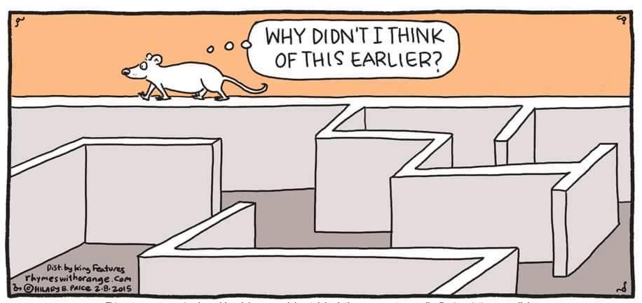 escaping-the-maze